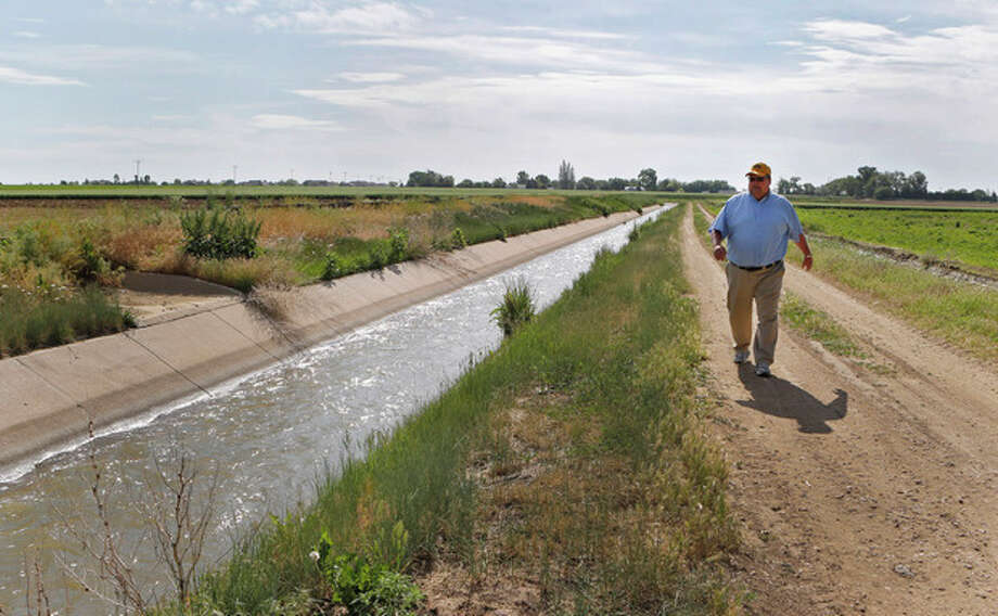 In this Friday, June 7, 2013, photo farmer Kent Peppler inspects one of his irrigation ditches that provides water to irrigate his crops on his farm near Greeley, Colo. Peppler says he is fallowing some of his corn fields this year because he can't afford to irrigate the land, in part because deep-pocketed energy companies have driven up the price of water. (AP Photo/Ed Andrieski) / AP