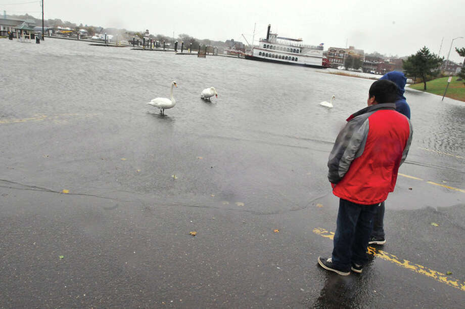 Hour photo/Matthew VinciWeather for the swansNorwalkers observe severe flooding in Veterans Park Monday afternoon as Hurricane Sandy moves into the area. / (C)2011 {your name}, all rights reserved