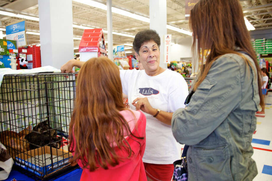 Nancy Corbo talks to potential adopters during a T.A.I.L.S Kitten Kaboodle adoption event at Petco in Norwalk Sunday afternoon. Hour Photo / Danielle Calloway