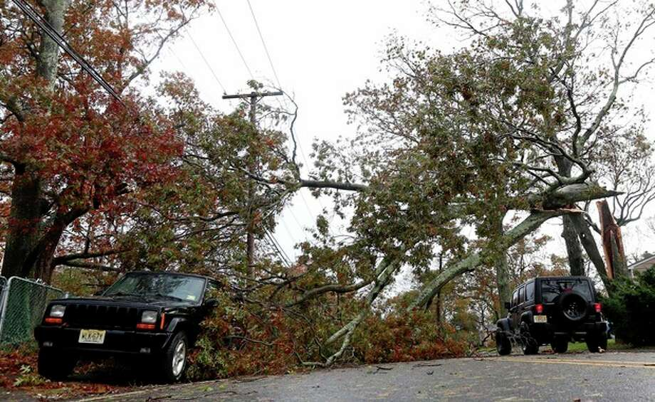 FILE - In this Oct. 30, 2012 file photo, a vehicle, right, makes its way under a downed tree caused by hybrid storm Sandy in Brick, N.J. Experts say the winds of Superstorm Sandy took out more trees in the neighborhoods, parks and forests of New York and New Jersey than any previous storm on record. (AP Photo/Julio Cortez) / AP
