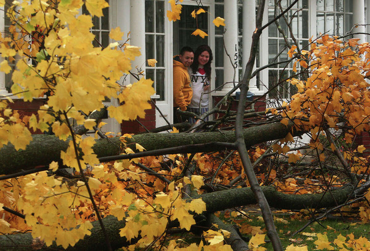 FILE - In this Oct. 29, 2012 file photo, David Zwingle and his fiancee Alejandra Juarez take a look out of their front door in Morristown, N.J., moments after a maple tree was blown down by high winds from Superstorm Sandy. Experts say Sandy's winds took out more trees in the neighborhoods, parks and forests of New York and New Jersey than any previous storm on record. (AP Photo/The Daily Record, Bob Karp, File) NO SALES