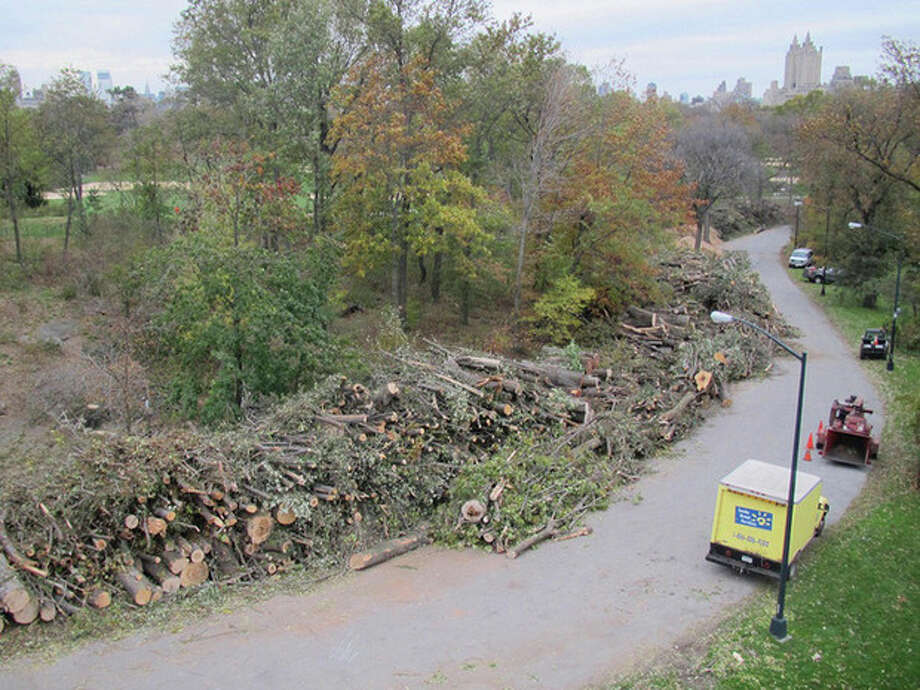 This Nov. 7, 2012 photo provided by the Central Park Conservancy shows limbs and trunks of trees that were destroyed or damaged by Superstorm Sandy stacked along Central Park's 102nd Street cross drive in New York. Experts say Sandy's winds took out more trees in the neighborhoods, parks and forests of New York and New Jersey than any previous storm on record. Nearly 10,000 were lost in New York City alone. (AP Photo/Central Park Conservancy) / Central Park Conservancy