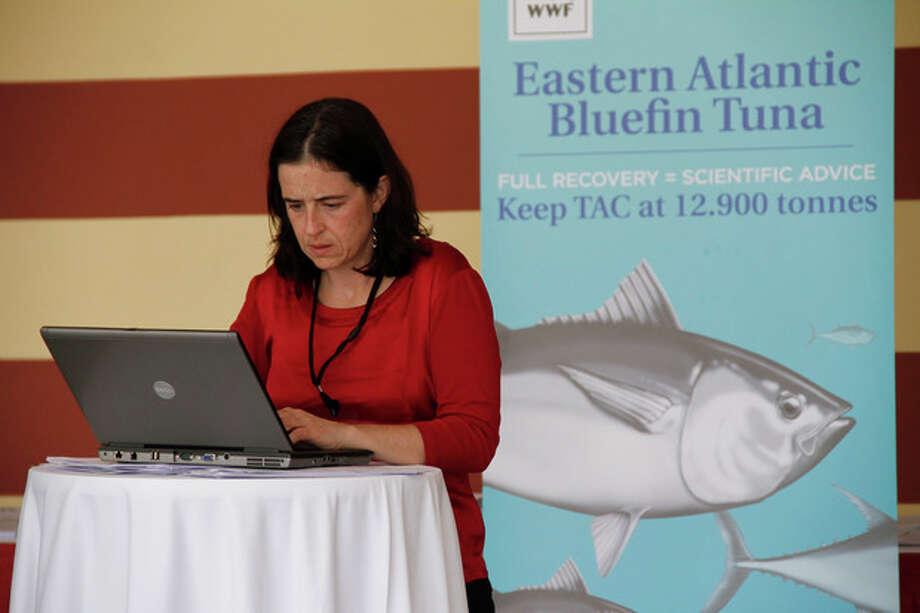 Shark expert Allison Perry of Oceana Europe works on her computer outside the conference for the 18th meeting of the International Commission for the Conservation of Atlantic Tuna in Agadir, Morocco, which declined to put in new protections for endangered shark populations on Monday Nov. 19, 2012. Member nations of the fisheries group did agree to maintain strict quotas to stop overfishing of severely depleted bluefin tuna stocks. (AP Photo/Paul Schemm) / AP