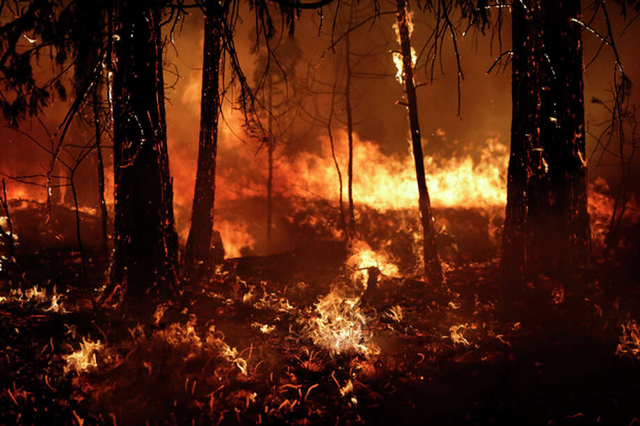 Trees burn in a burnout fire as firefighters continue to battle the Rim Fire near Yosemite National Park, Calif., on Sunday, Aug. 25, 2013. Fire crews are clearing brush and setting sprinklers to protect two groves of giant sequoias as a massive week-old wildfire rages along the remote northwest edge of Yosemite National Park. (AP Photo/Jae C. Hong) / AP