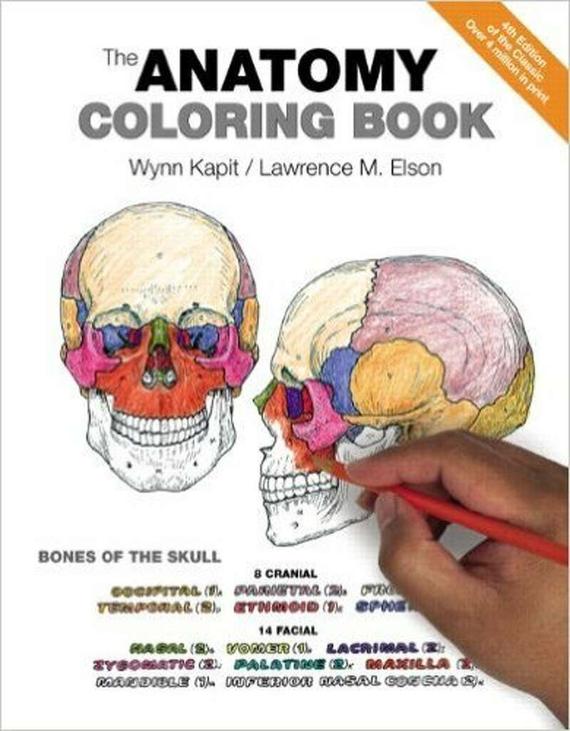 The zoology coloring book -  The Anatomy Coloring Book By Anatomist Lawrence Elson And Illustrator Wynn Kapit Was First