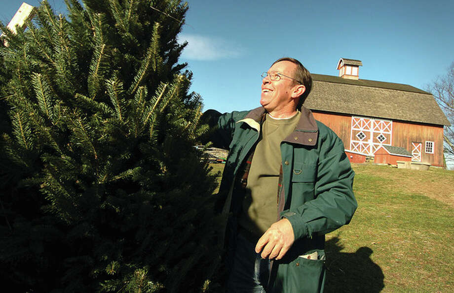 Hour Photo/Alex von KleydorffJim Meinhold shakes out a 7-foot Balsam fresh-cut tree in preparation for Ambler Farm's Greens sale this weekend and next. / 2012 The Hour Newspapers/Alex von Kleydorff