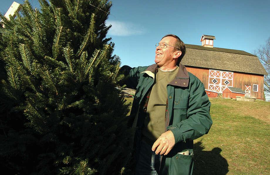 Hour Photo/Alex von KleydorffJim Meinhold shakes out a 7-foot Balsam fresh-cut tree in preparation for Ambler Farm's Greens sale this weekend and next. / 2012 The Hour Newspapers/Alex von Kleydorff
