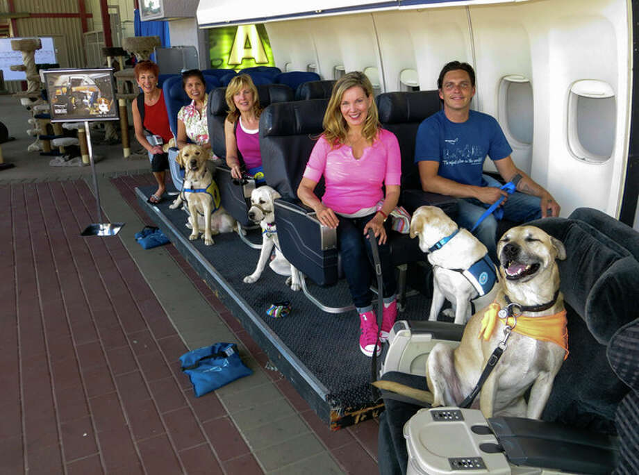In this Aug 19, 2013, photo provided by Air Hollywood, Megan Blake, Air Hollywood K9 Flight School Program Director, sitting left, front row, with dog Super Smiley, far right, and other puppies from the Canine Companions for Independence pose for a photo during a K9 flight simulation at the America's Family Pet Expo, at the Orange County Fair Grounds in Costa Mesa, Calif. The idea was the brainchild of Talaat Captan, president and CEO of Air Hollywood, the world's largest aviation-themed film studio, who noticed a dog owner having a rough go getting a dog through airport security. (AP Photo/Air Hollywood, Sandra Lollino) / Air Hollywood