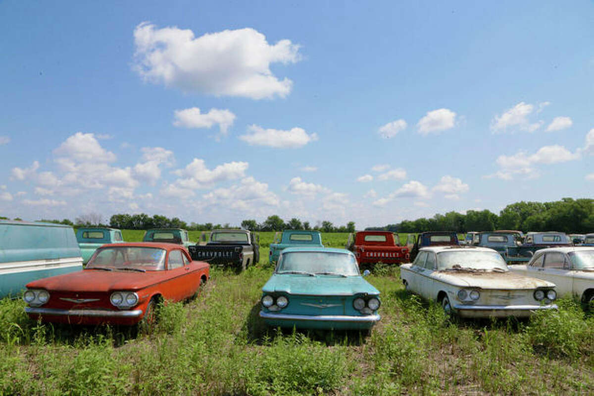 In this Aug. 12, 2013 photo, rare Corvairs and pickup trucks are lined up in a field near the former Lambrecht Chevrolet car dealership in Pierce, Neb. In September, bidders from at least a dozen countries and all 50 U.S. states will converge on Pierce, a town of about 1,800 in northeast Nebraska, for a two-day auction that will feature about 500 old cars and trucks, mostly Chevrolets that went unsold during the dealership?'s five decades in business. About 50 have fewer than 20 miles on the odometer, and some are so rare that no one has established a price. The most valuable could fetch six-figure bids. (AP Photo/Nati Harnik)