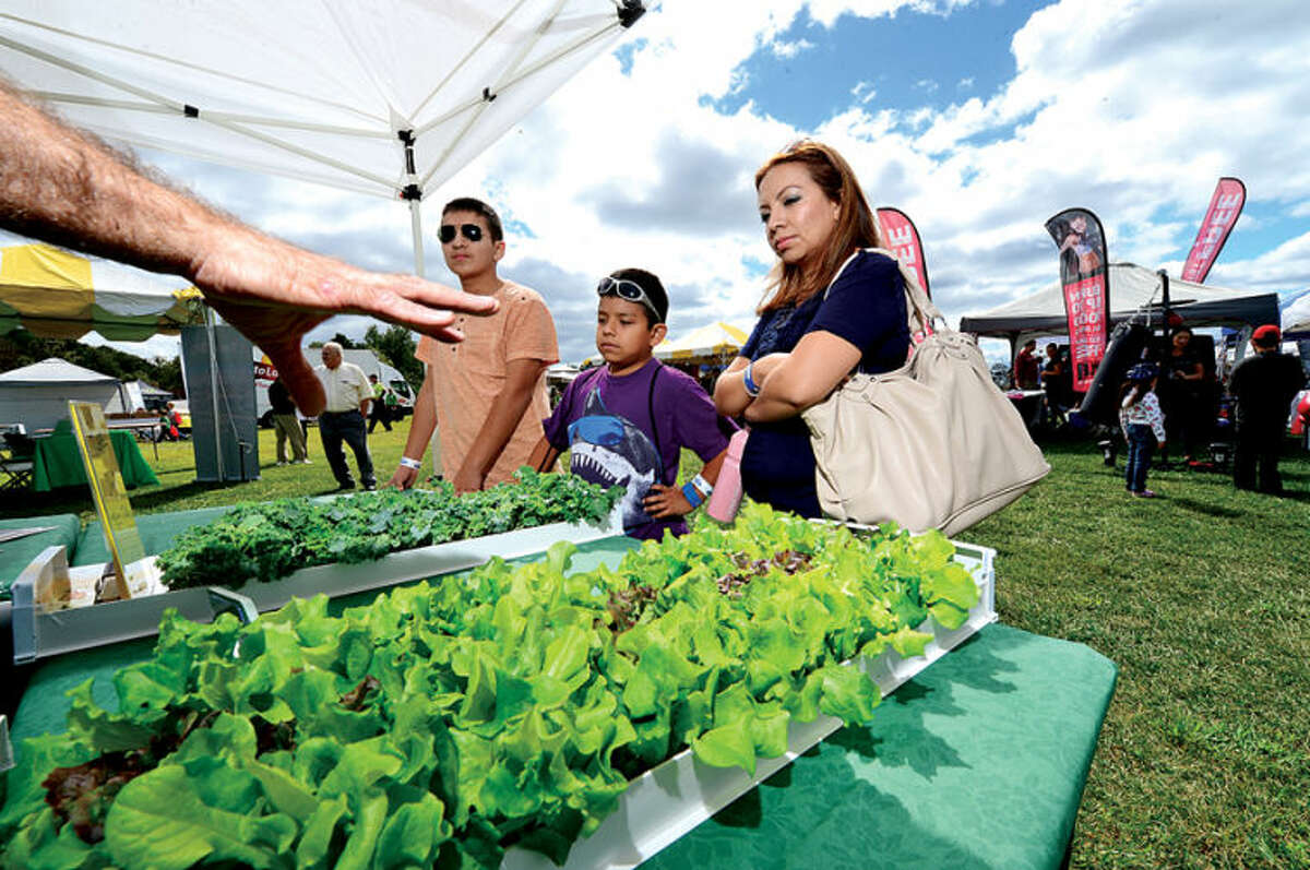 Brandon, Alan and Susana Veloz look at home grown croops from Metro Crops during the Live Green Connecticut! green-living and family festival Saturday at Taylor Farm Park. The two-day festival promotes living green with a focus on education, sustainability, caring for the environment and our natural resources.Hour photo / Erik Trautmann