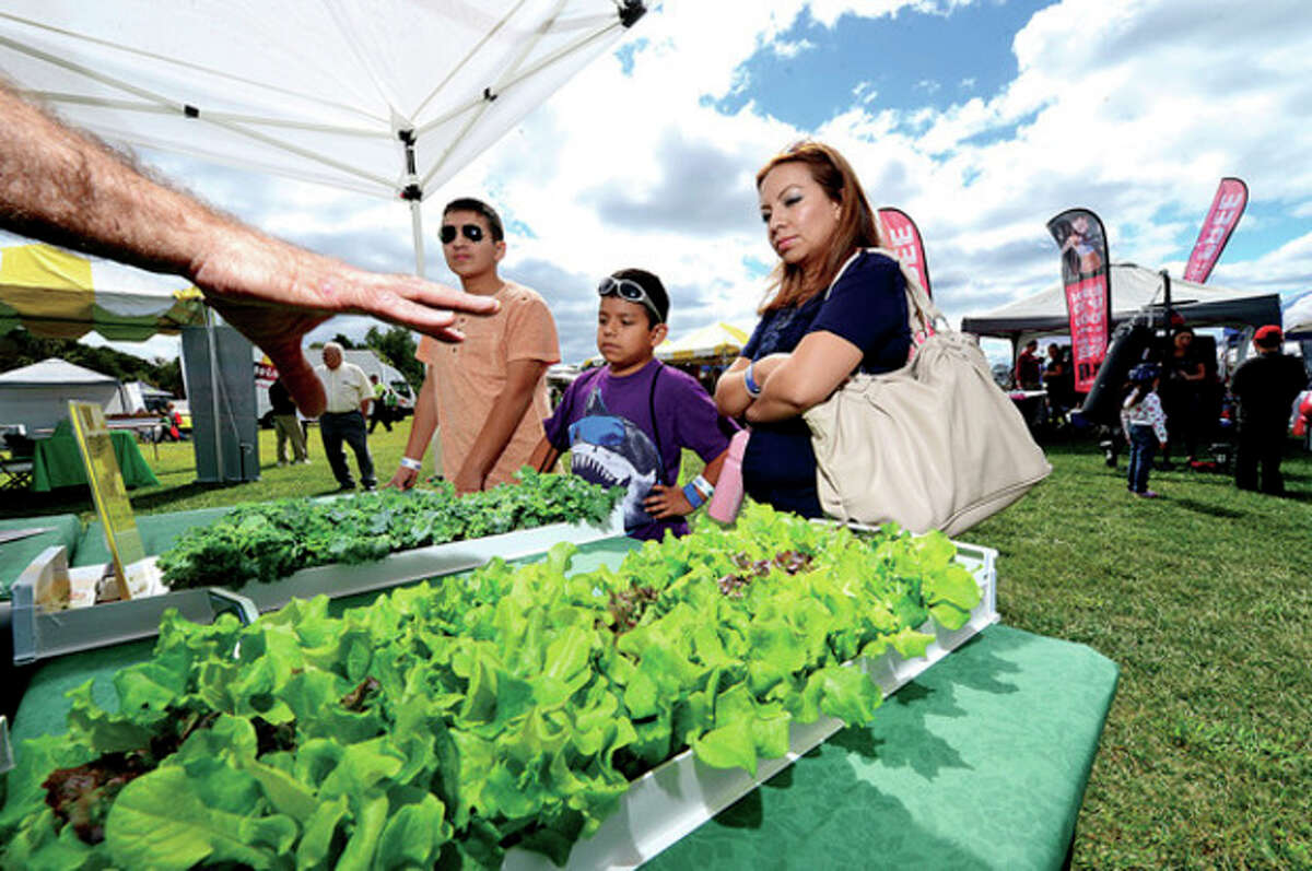 Brandon, Alan and Susana Veloz look at home grown crops from Metro Crops.