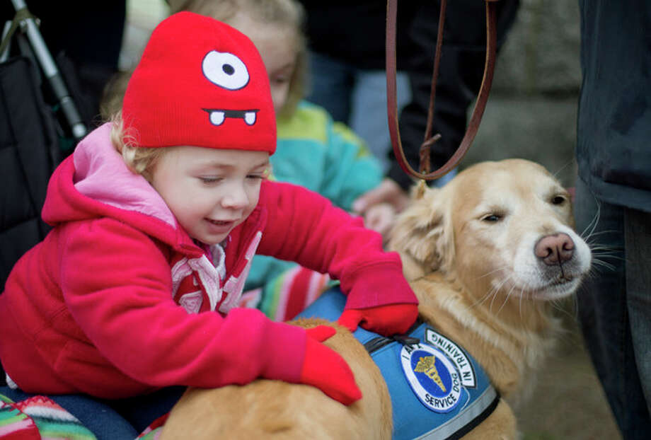 FILE - In this Tuesday, Dec. 18, 2012 file photo, Addison Strychalsky, 2, of Newtown, Conn., pets Libby, a golden retriever therapy dog, during a visit from the dogs and their handlers to a memorial for the Sandy Hook Elementary School shooting victims in Newtown. As the shock of Newtown's horrific school shooting starts to wear off, as the headlines fade and the therapists leave, residents are seeking a way forward through faith, community and a determination to seize their future. (AP Photo/David Goldman, File) / AP