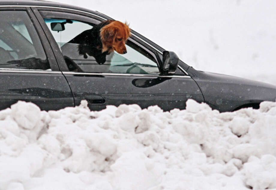 A dog pokes its head out the window to look at the accumulating snow near an exit ramp on Highway 45 in West Bend, Wis., Friday, Dec. 28, 2012. Snow is expected to continue in West Bend through the weekend. (AP Photo/West Bend Daily News, John Ehlke) / West Bend Daily News