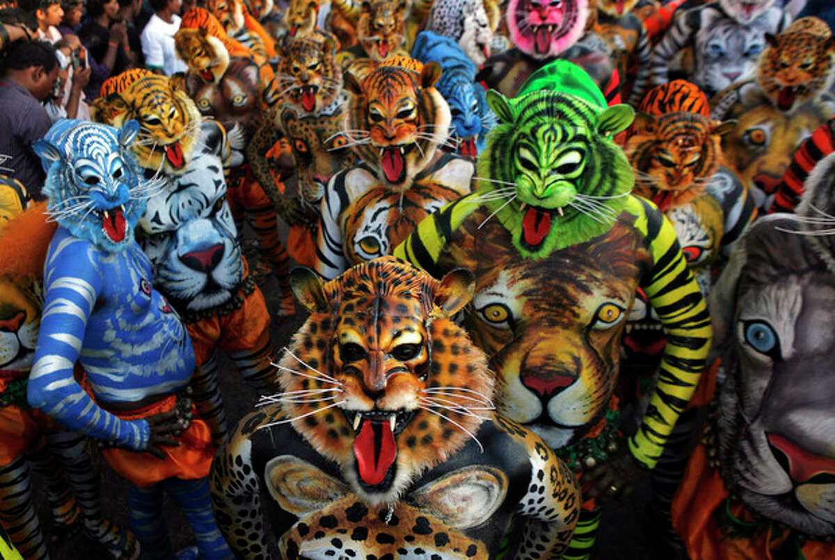 Artists with painted bodies and tiger masks perform during the annual 'Pulikali' or Tiger Dance in Thrissur, in the southern Indian state of Kerala, Thursday, Sept. 19, 2013. Pulikali is a colorful recreational folk art revolving around the theme of tiger hunting, performed to entertain people during Onam, an annual harvest festival. (AP Photo/Arun Sankar K., File)