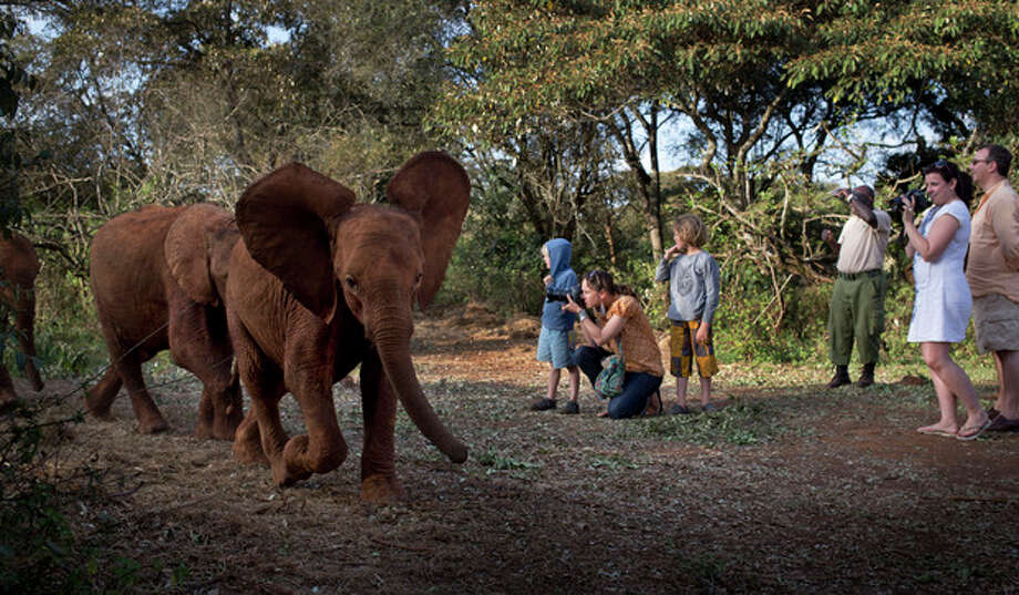 Foreign visitors take photographs as baby orphaned elephants return back for feeding time after spending the day in Nairobi National Park, at the David Sheldrick Wildlife Trust elephant orphanage in Nairobi, Kenya Monday, Sept. 30, 2013. The risk to the country's tourism was one of the first concerns expressed by officials during the initial days of the Westgate Mall siege, but tourists continue to fly to Kenya for safaris and beach vacations seemingly despite a number of foreigners being killed in last week's attack. (AP Photo/Ben Curtis) / AP