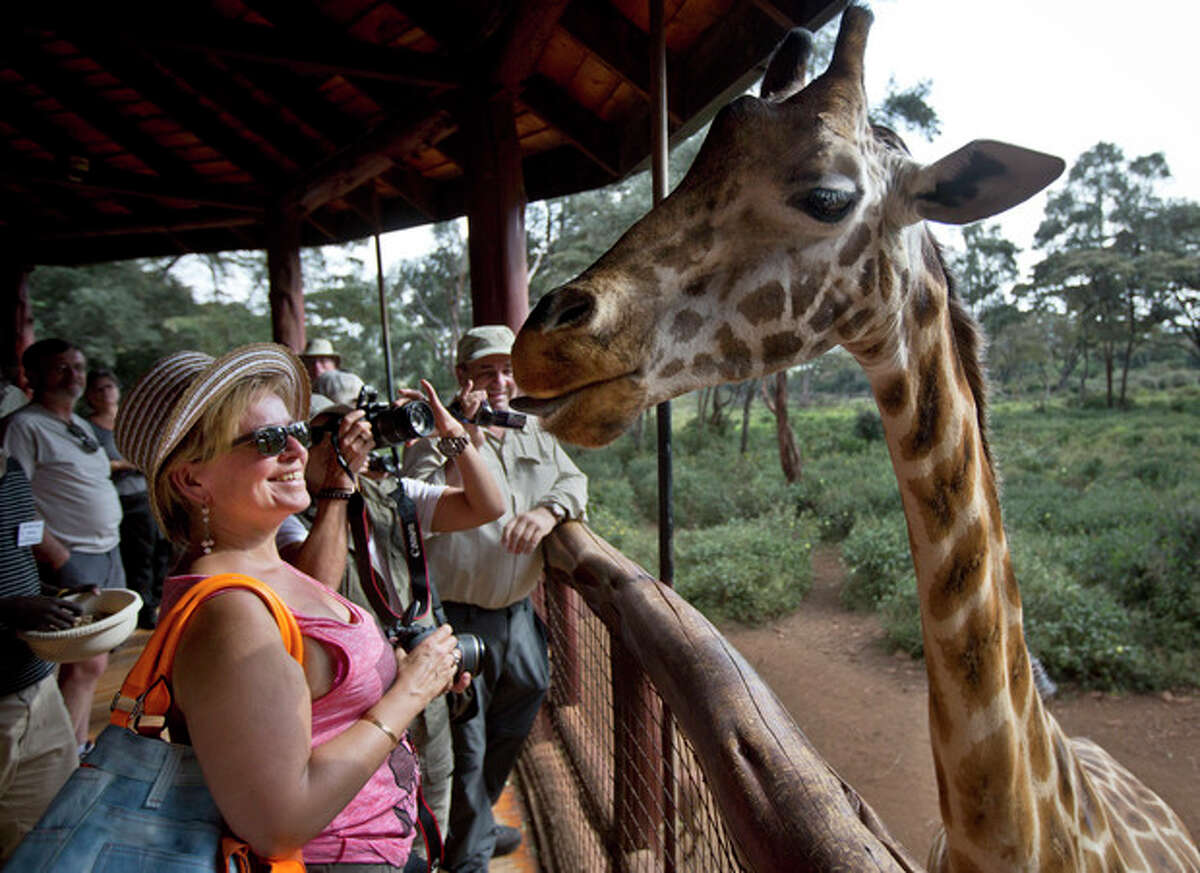 A foreign visitor from Belgium, left, smiles after feeding a giraffe from her hand while others take photographs at the Giraffe Centre, in the Karen neighborhood of Nairobi, Kenya Monday, Sept. 30, 2013. The risk to the country's tourism was one of the first concerns expressed by officials during the initial days of the Westgate Mall siege, but tourists continue to fly to Kenya for safaris and beach vacations despite a number of foreigners being killed in last week?'s attack. (AP Photo/Ben Curtis)