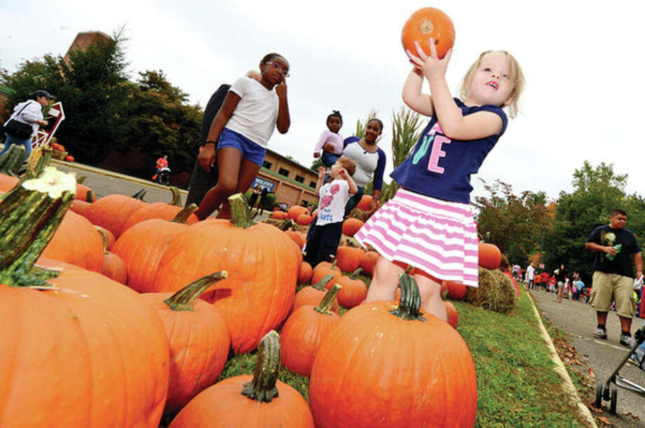 Hour photo / Erik Trautmann3 year old Caitlin Eckert picks out a pumpkin during Wolfpit Elementary School's annual Pumpkin Festival Saturday. / (C)2013, The Hour Newspapers, all rights reserved