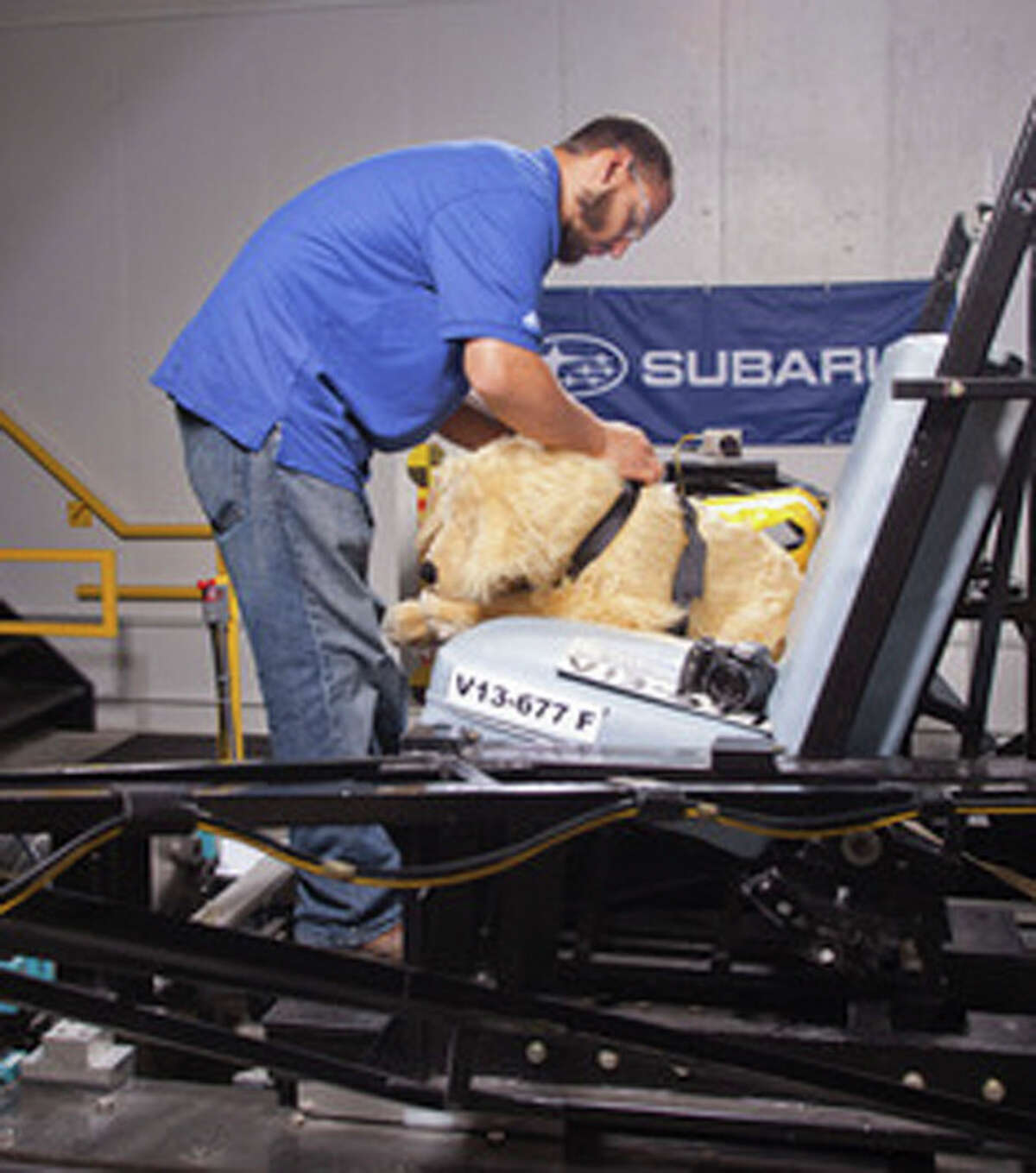 This June 2013 image provided by Subaru shows MGA Research Corp. staff preping a crash test dog for testing. Subaru and the Center for Pet Safety in Manassas, Virginia. The Center conducted a collaborative crash test study to test the effectiveness of popular pet harnesses. All the dummy dogs used to test dog restraint harnesses for the Center for Pet Safety make up a team of what is believed to be the nation's first instrumented, weighted and correct canine prototypes. (AP Photo/Subaru)