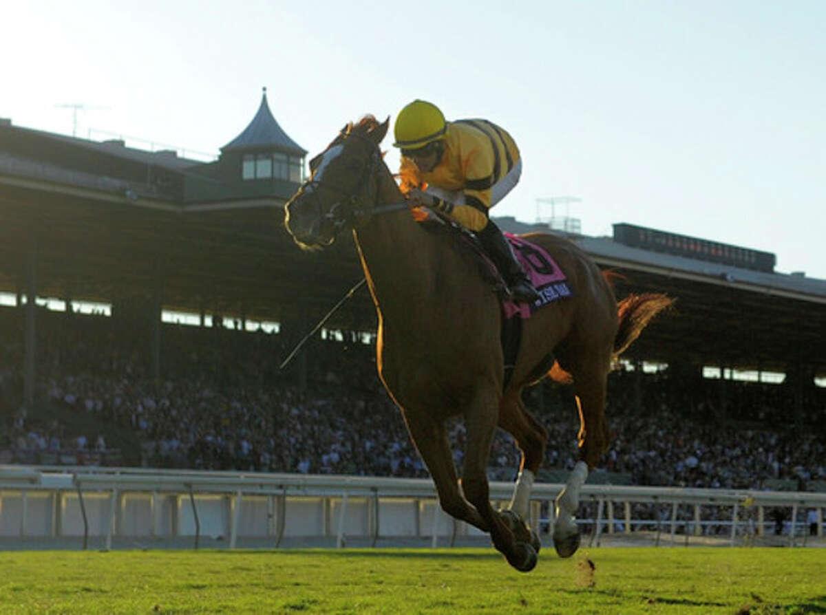 Jockey Jose Lezcano rides Wise Dan to victory in the Breeders' Cup Mile horse race at Santa Anita Park Saturday, Nov. 2, 2013, in Arcadia, Calif. (AP Photo/Mark J. Terrill)
