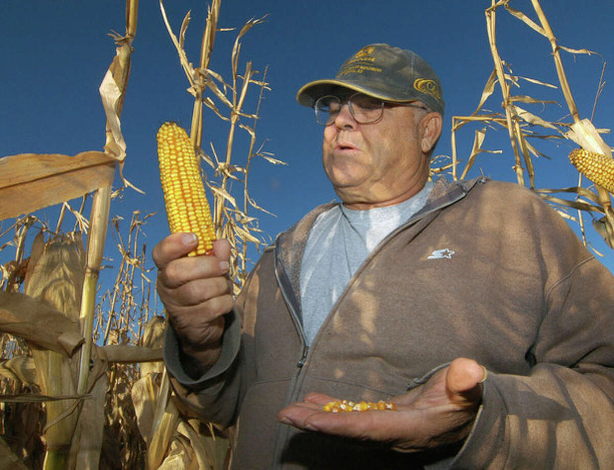 ADVANCE FOR NOV. 13 -- In this Oct. 24, 2013 photo Robert Malsom checks corn in one of his fields near Roscoe, S.D. Malsam nearly went broke in the 1980s when corn was cheap. So now that prices are high and he can finally make a profit, he's not about to apologize for ripping up prairieland to plant corn. (AP Photo/Doug Dreyer)