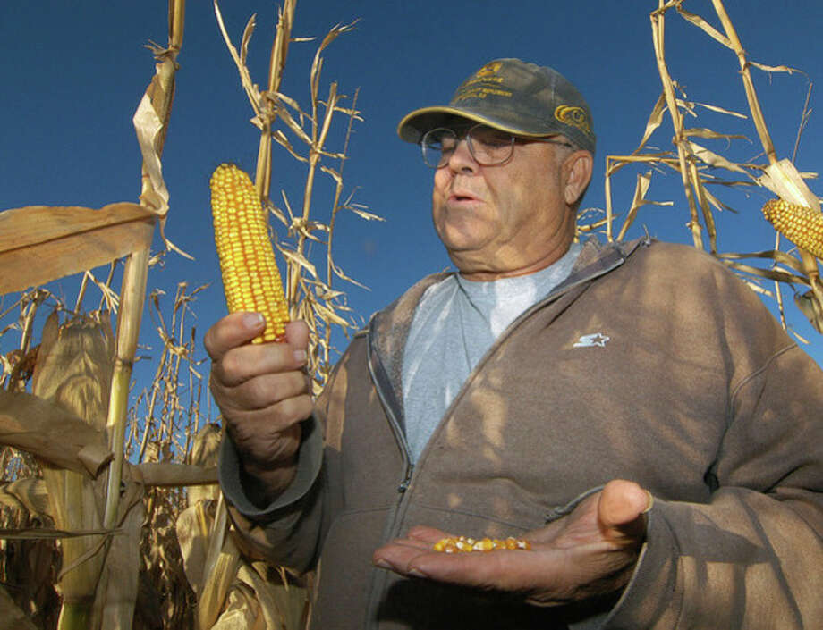 ADVANCE FOR NOV. 13 -- In this Oct. 24, 2013 photo Robert Malsom checks corn in one of his fields near Roscoe, S.D. Malsam nearly went broke in the 1980s when corn was cheap. So now that prices are high and he can finally make a profit, he's not about to apologize for ripping up prairieland to plant corn. (AP Photo/Doug Dreyer) / AP