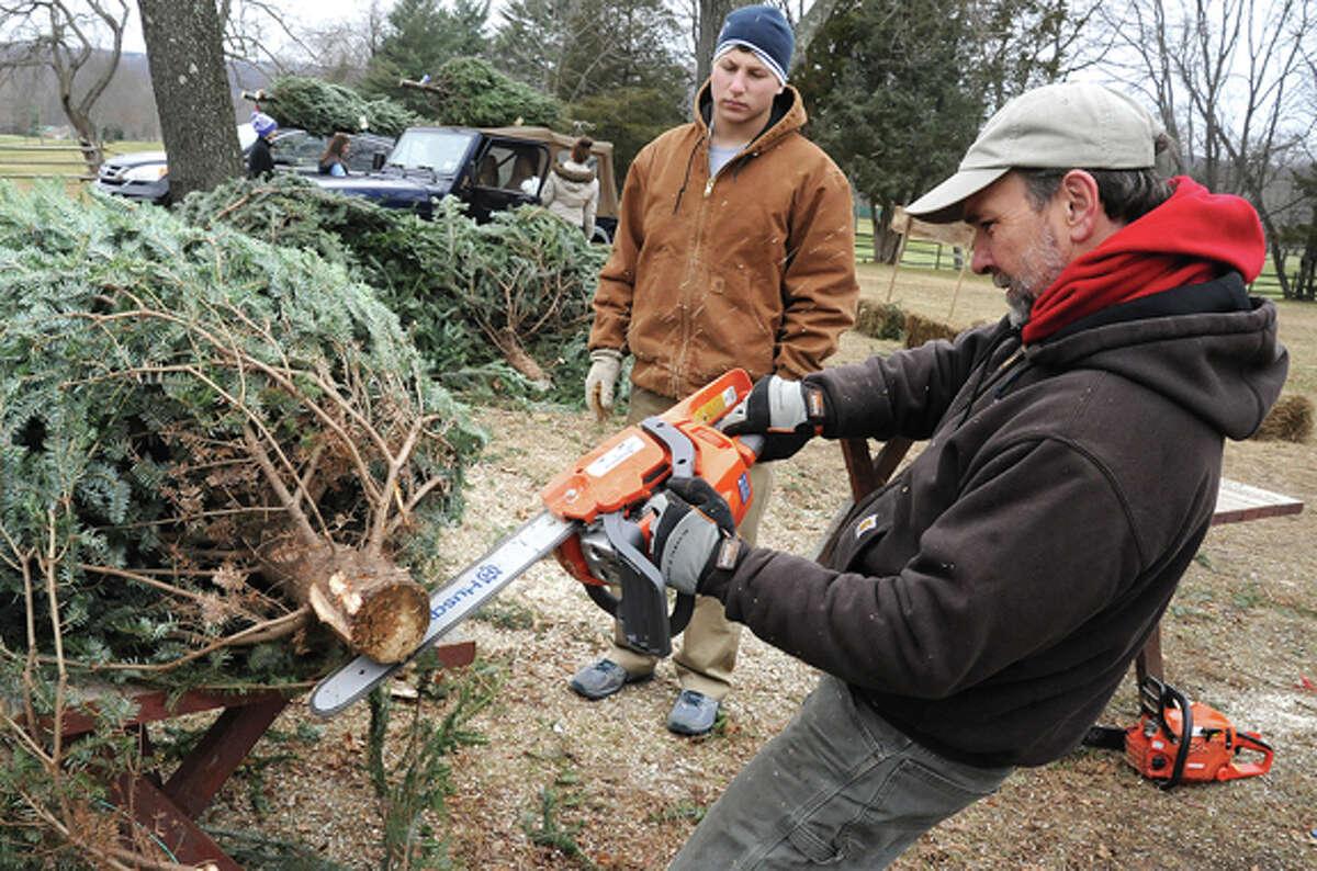 Matt Schmitt makes Christmas Tree alterations for customers Sunday in Wilton at Ambler Farm. Hour photo/Matthew Vinci