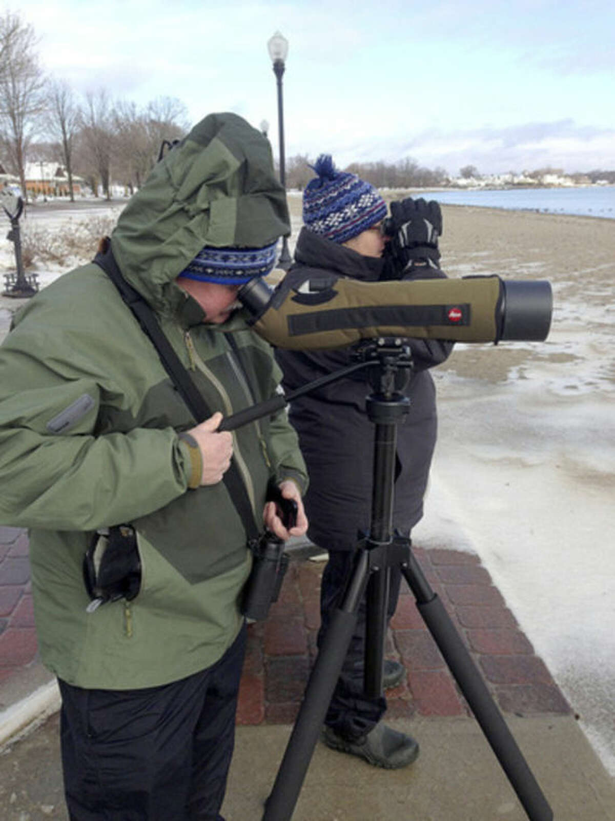 Hour photo / Chris Bosak Townsend and Mardi Dickinson of Norwalk look for birds at Calf Pasture Beach during Sunday's Christmas Bird Count.