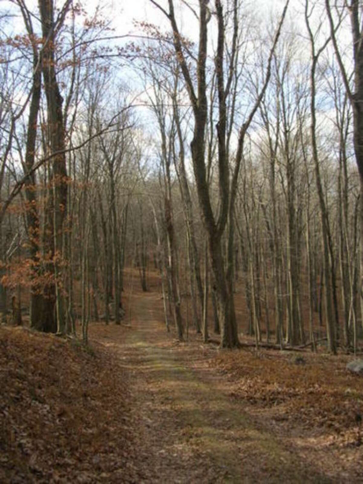The trail into the Devil's Den