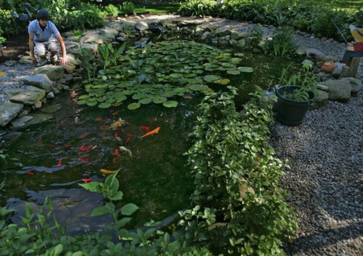 Brendan Kovarik, 17, built a landscaped pond in Sharon Twp., Ohio, Tuesday, July 1. MCT photo