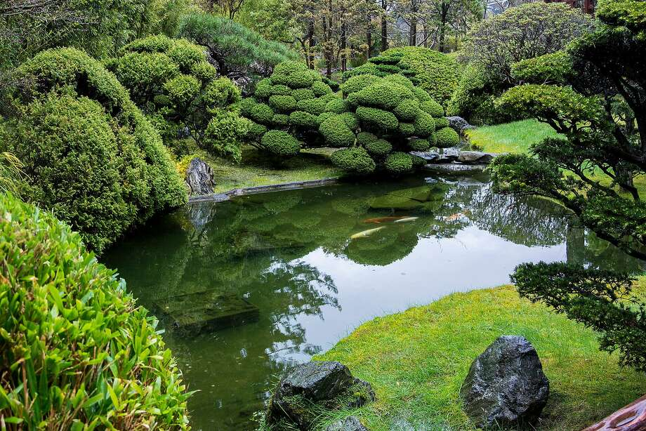 Relax even more at the serene Japanese Tea Garden in Golden Gate Park knowing you saved a few dollars with your local ID. (It's $6 for residents, $8 for other visitors.) Photo: Beth Wald, Getty Images
