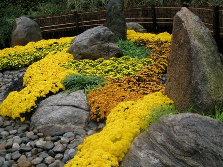This photo taken Oct. 28, 2009 shows a Japanese rock garden at The New York Botanical Garden which mixes autumn-colored blooms with interesting stone placement and shapes suggesting mountains, streams and shoreline. (AP Photo/Dean Fosdick)