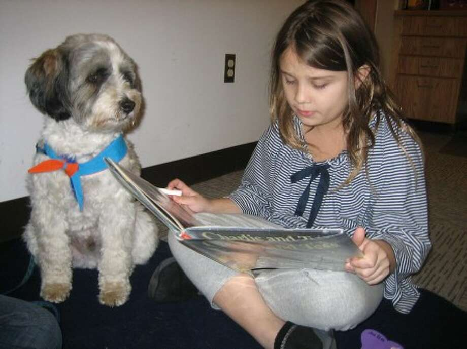 Julia Fennell reads to Barkly at Wilton Library in this Dec. 1, 2007 file photo. (photo/Wilton Library)