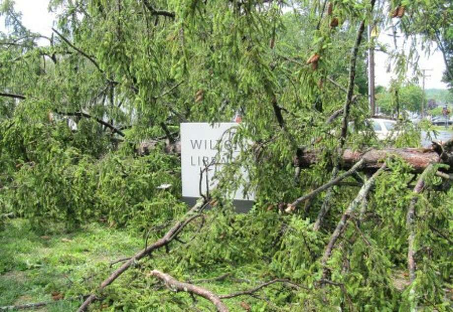 A tree knocked over in Thursday''s storm blocks off Wilton Library.