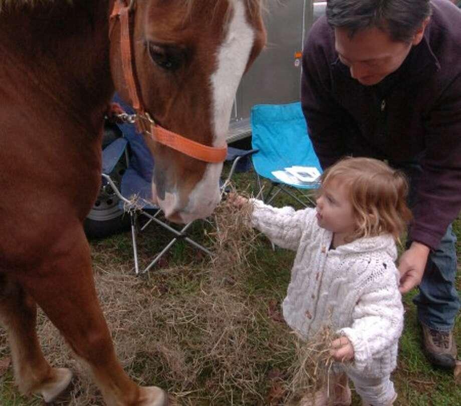 Ambler Farm Day 2008. Photo by Alex von Kleydorff.