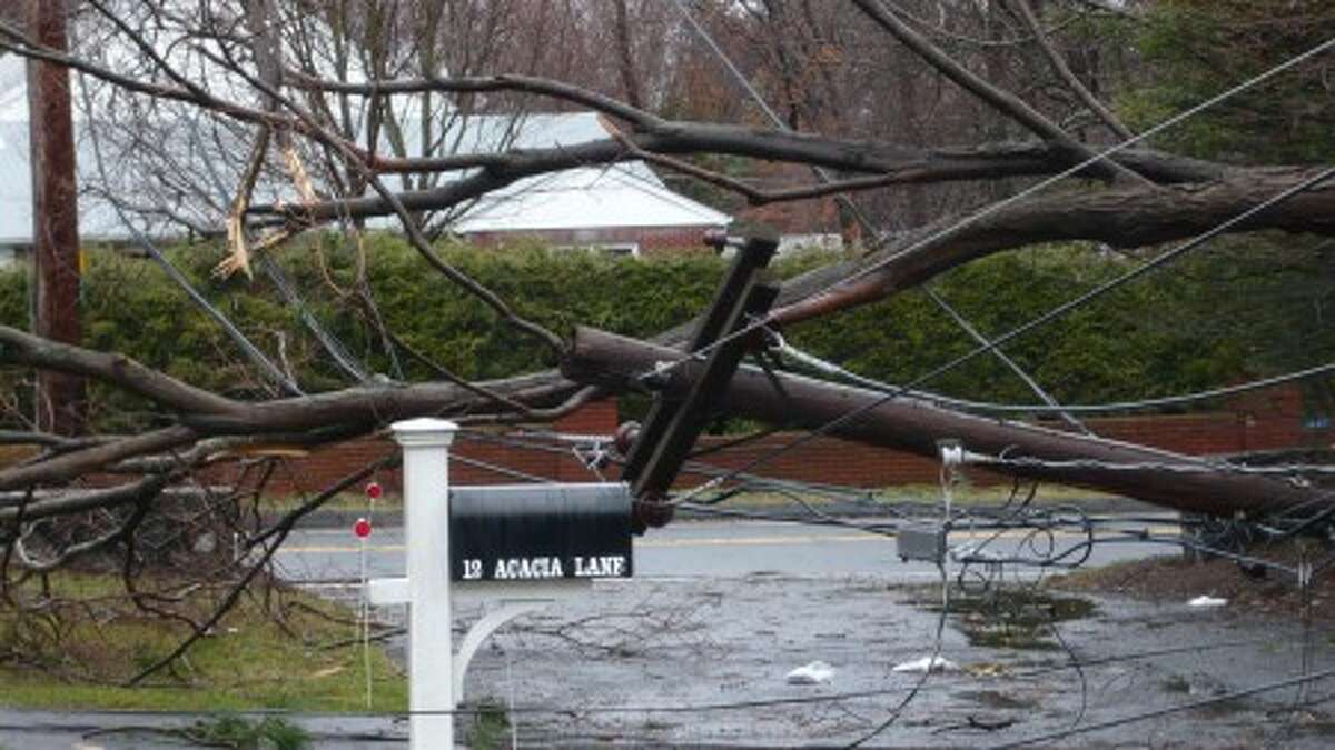 Art Scialabba Chairman, Norwalk Republican Town Committee, sends us this photo of a tree and wires across his driveway.