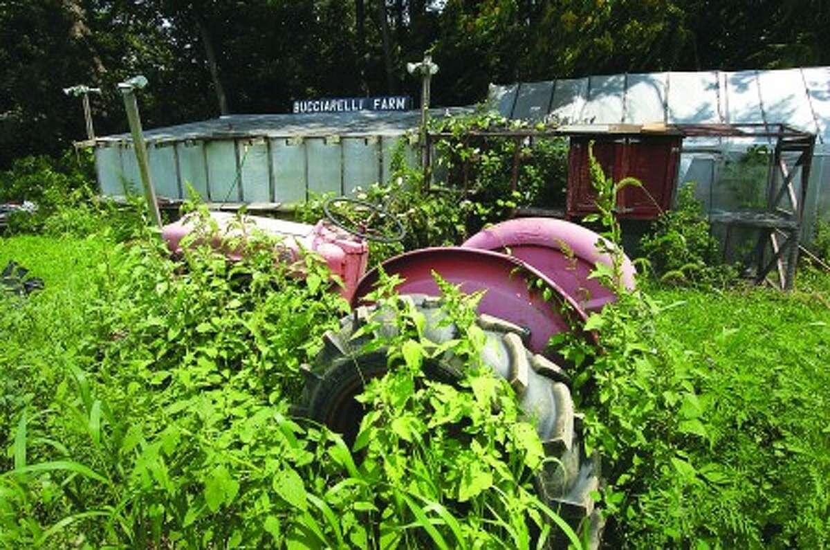 Photo/Alex von Kleydorff. The Greenhouse and a farm tractor that been overgrown.