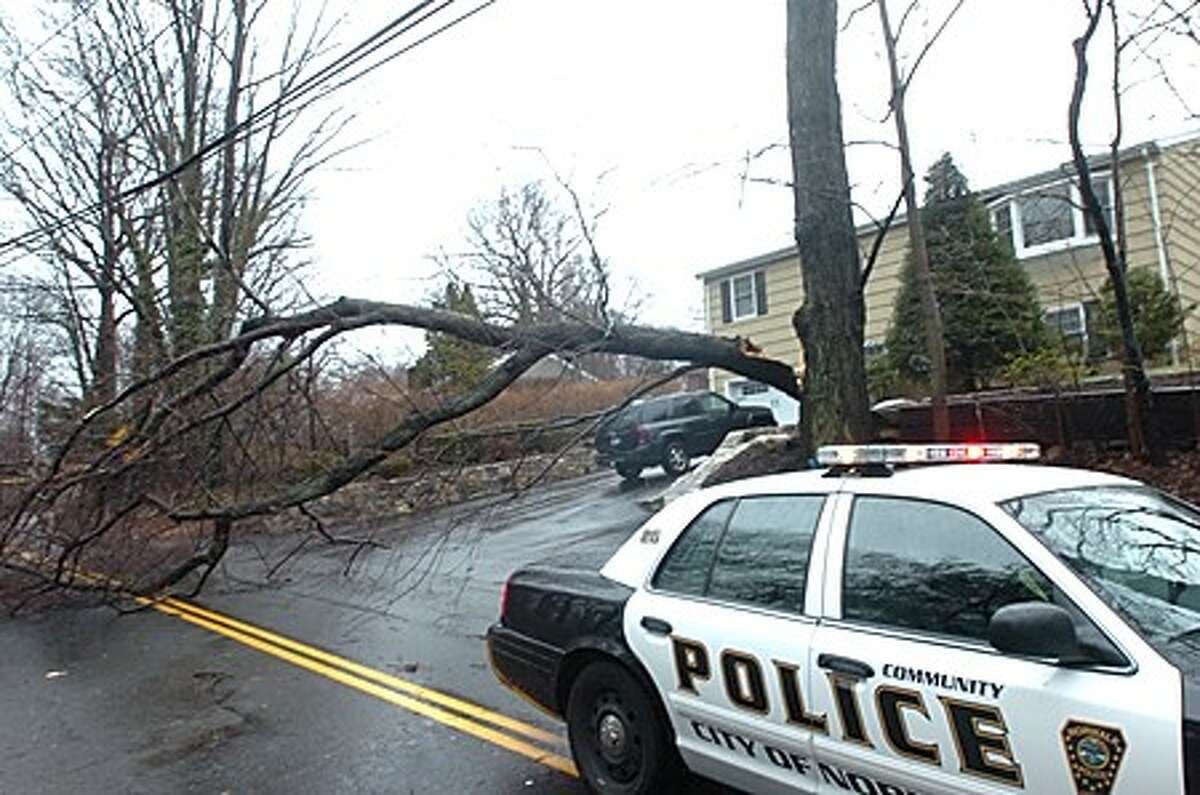 Linden street in West Norwalk closed Sunday with a tree down. hour photo/matthew vinci