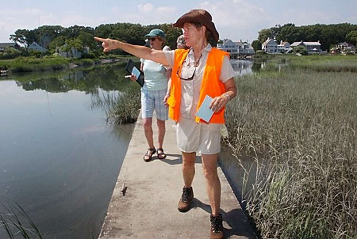 Kathy Sievers, tour guide for The Farm Creek Perserve, leads a tour for perspective tour guides during a training class at the former Hart property on Sammis St. Hour photo / Erik Trautmann