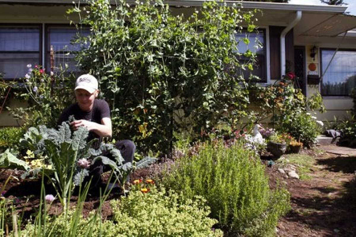 Robyn Streeter works in a residential front yard vegetable and flower garden she helped create in Portland, Ore., Friday, June 18, 2010. Your Backyard Farmer began in 2006 when Streeter and Donna Smith were growing weary of driving through the city''s outskirts looking for affordable land to farm. The thought struck them:
