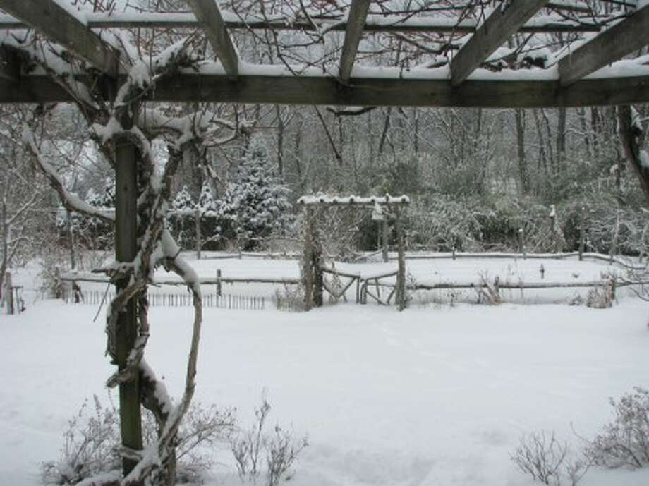 Pros and cons of snow in the garden