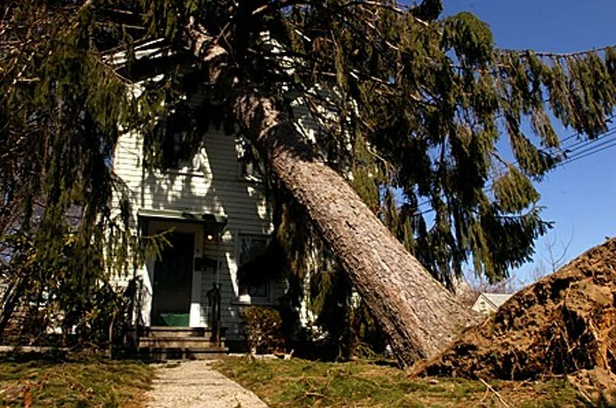 A pine tree fell on a house on Kellogg Rd. Hour photo / Erik Trautmann