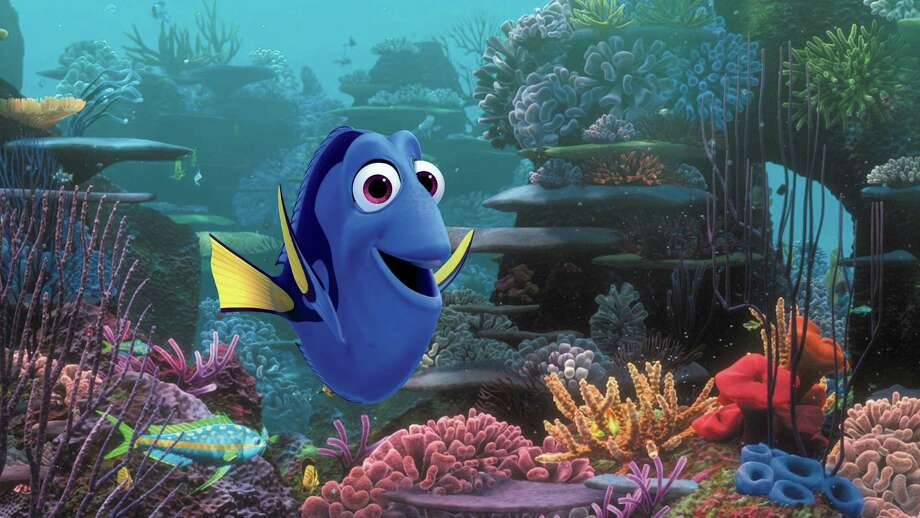 "This image released by Disney shows the character Dory, voiced by Ellen DeGeneres, in a scene from ""Finding Dory."" Fish experts worry that the public will want to purchase blue tang fish, which don't breed in captivity. Photo: Pixar / Associated Press / Disney"
