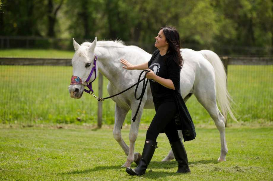 Tracey Stewart, leads Lily the horse she adopted away at the end of a news conference Wednesday, May 25, 2016, in Kennett Square, Pa. Doreen Weston, the former owner of the horse adopted by Jon Stewart and his wife Tracey that was portrayed as having been shot by paintballs over 100 times, said Wednesday the animal was used at children's finger-painting parties and was never injured by a paintball gun. Lily was found seemingly abandoned at an auction stable in New Holland, Pa., in March. Police say she was covered in paint and extremely sore to the touch. (Photo: Matt Rourke, AP)