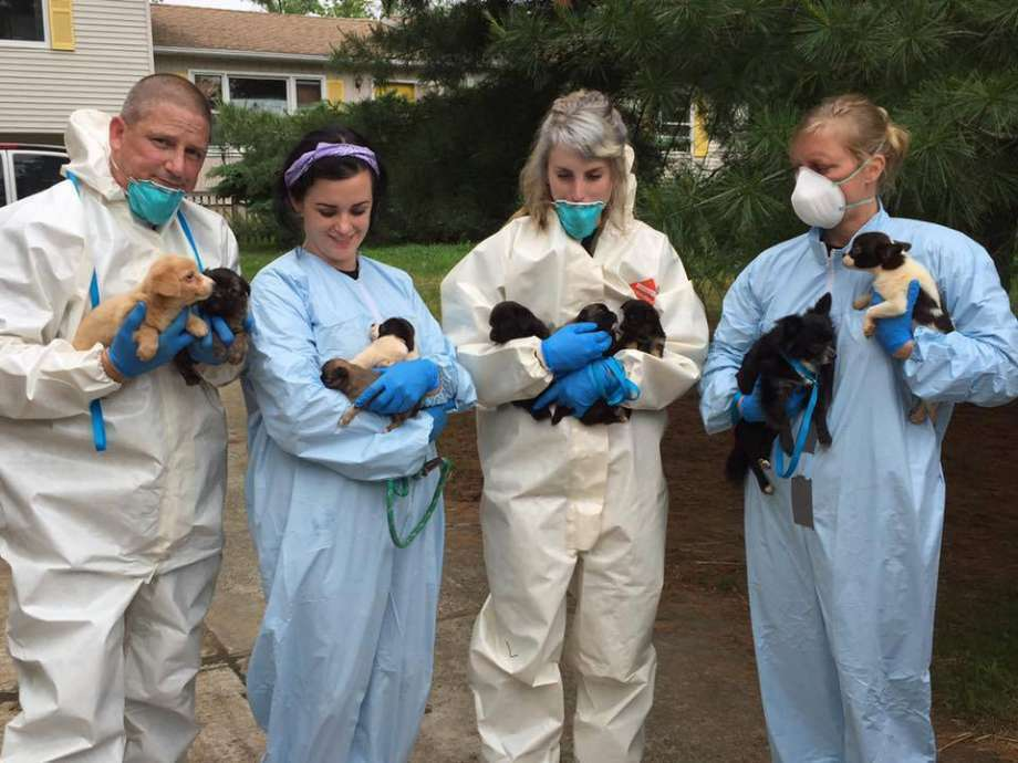 It took about 15 hours for Monmouth County SPCA workers to take 276 dogs from a home in New Jersey on Saturday. (Photo: Monmouth County SPCA Facebook)