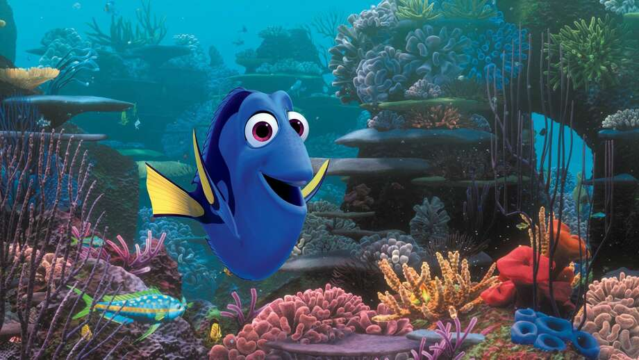 "This image released by Disney shows the character Dory, voiced by Ellen DeGeneres, in a scene from ""Finding Dory."" Fish experts worry that the public will want to buy blue tang fish, which don't breed in captivity. Photo: Pixar"