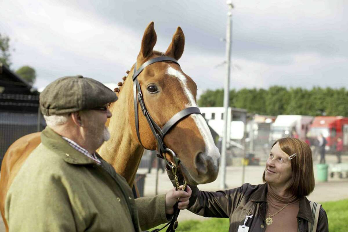 """Dark Horse"" follows the unlikely career of Dream Alliance."