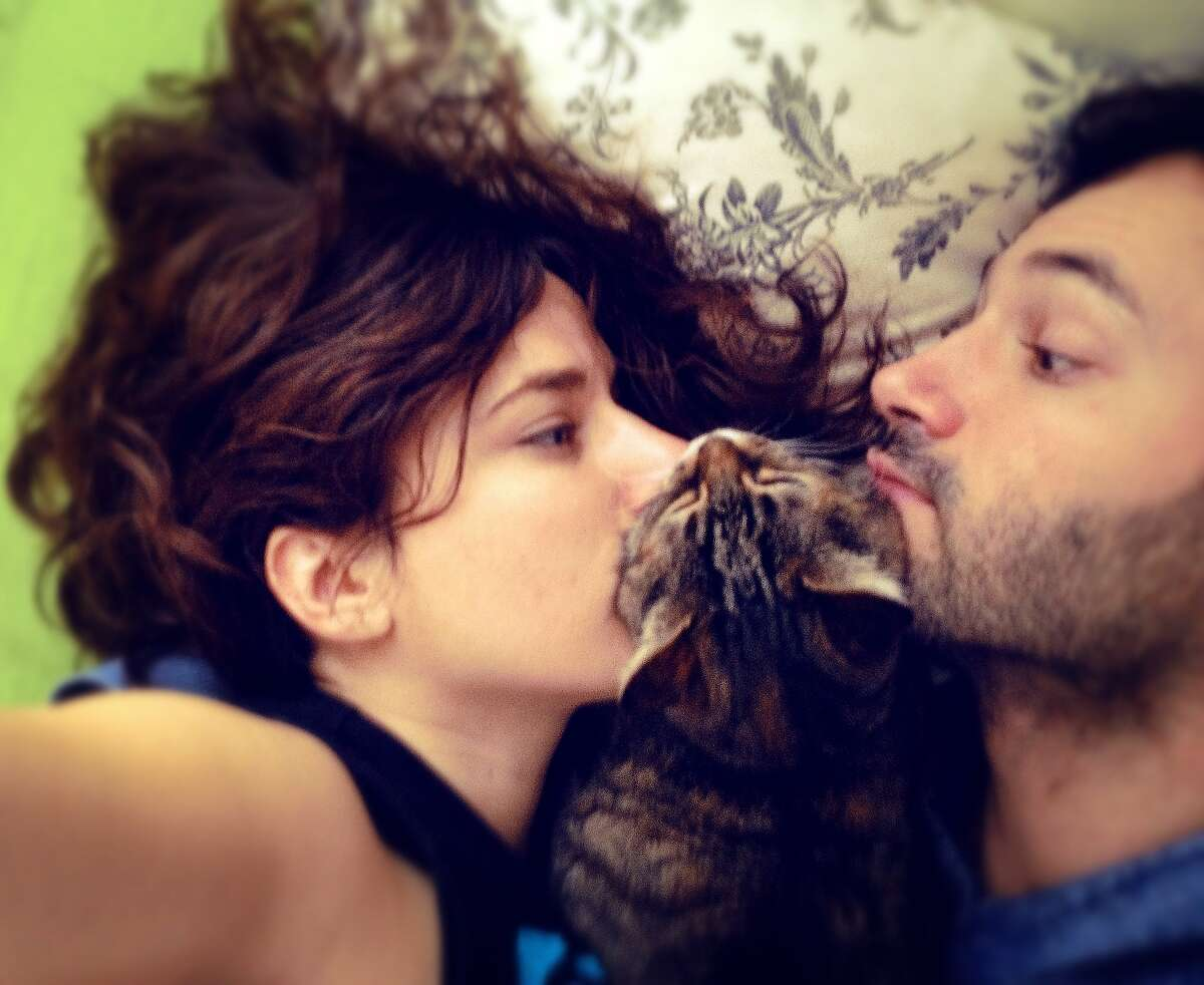 2. A cat might help your love life, guys: Ninety percent of single women said men who own a cat are