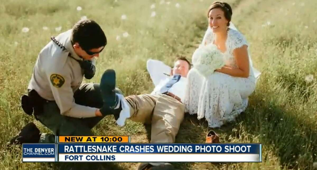 Johnny and Laura Benson were taking their wedding photos at Horestooth Reservoir in Colorado when a snake bit the groom, landing him in the hospital on June 20, 2016.