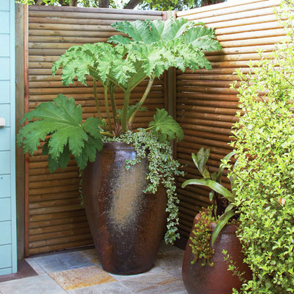 Privacy screen The best vacation spot can sometimes be in your very own backyard. At the enclosed end of this deck, panels made of horizontal tree stakes allow for peace and privacy. Design: Gary Marsh Design, Novato, CA (415/897-7623)