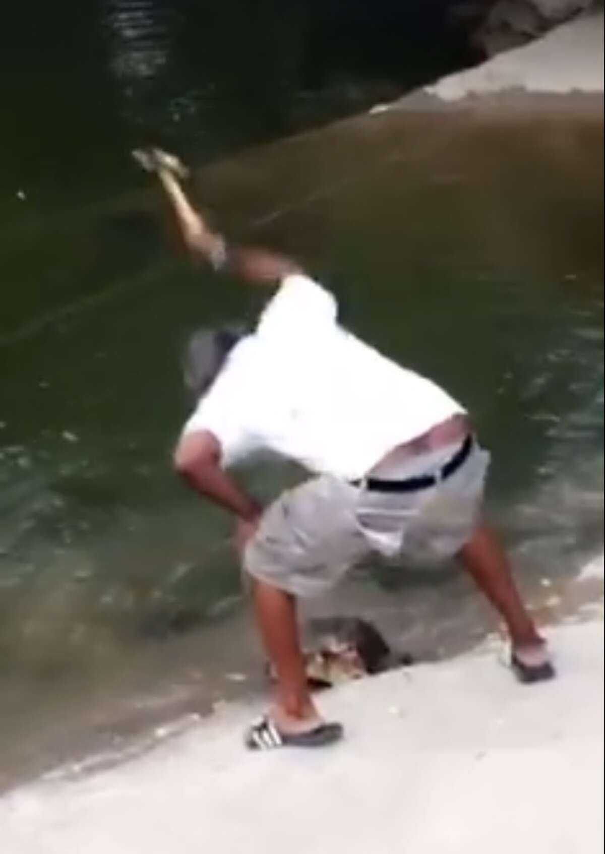 With the help of social media tips, authorities were able to track down Terry Washinhgton on June 23, 2016, who was caught on video  allegedly catching and beating a snapping turtle to death with a hammer on the banks of Lady Bird Lake in Austin.
